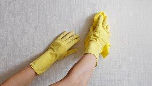limpeza de papel de parede